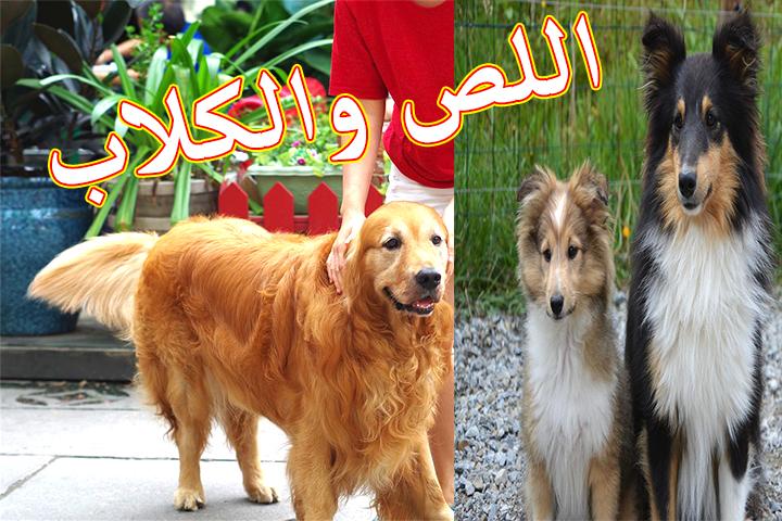 ملخص رواية اللص والكلاب