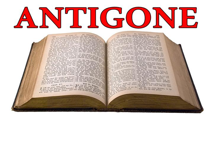 تلخيص رواية أونتيجون