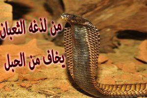 تفسير حلم الثعبان