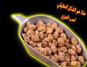 20 فوائد حب العزيز ستدهشك عالم حنان