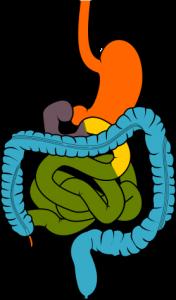 ادوية جرثومة المعدة